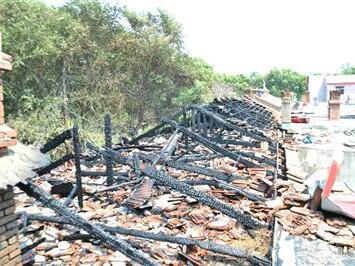榆林公布4起森林火灾典型案例