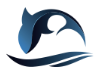 智慧海洋工程全方面解决商