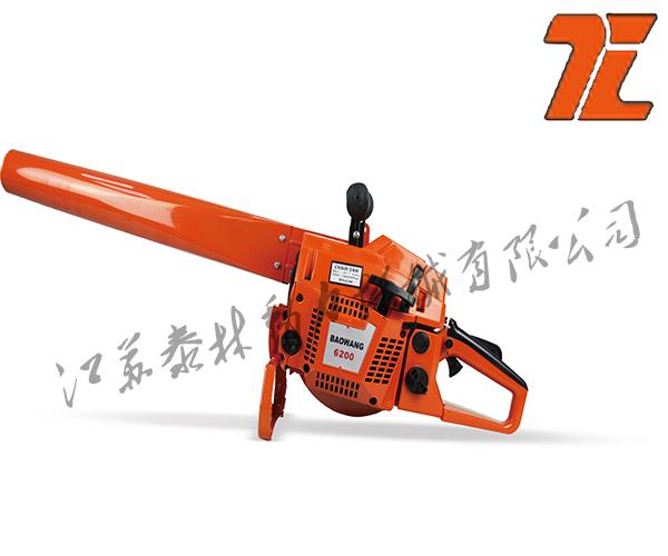 TL6200吹风机